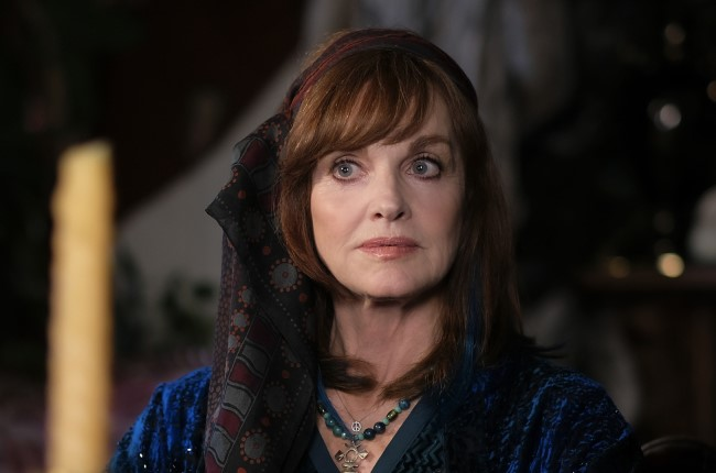 The former Nancy Drew Pamela Sue Martin in a cameo role.